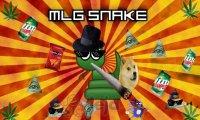 Wąż MLG