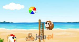 Siatkówka plażowa online