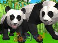 Symulator pandy