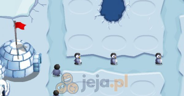 Wojna pingwinów