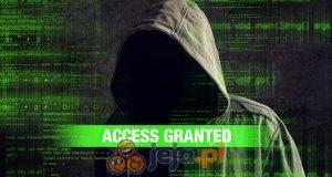 Haker idle