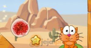 Podróże kota: Afryka