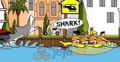 Rekin w Miami