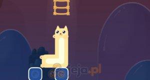 Podróż długiego kota