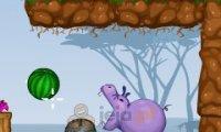 Nakarm hipopotamy