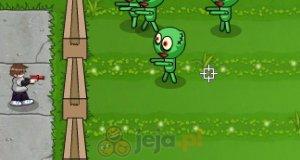Szmacianki zombie