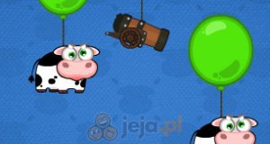 Znajdź krowę
