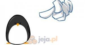Nie denerwuj pingwina