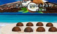 Kokosowa spostrzegawczość