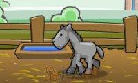 Jeźdźca konny