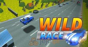Dziki wyścig