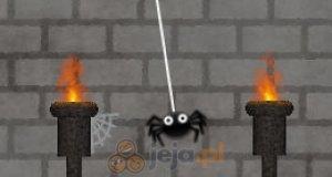 Sprytny pajączek