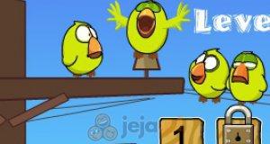 Ocal ptaki