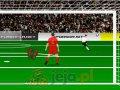 Profesjonalny bramkarz Euro 2012 Gry