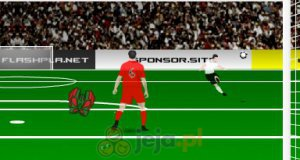 Profesjonalny bramkarz Euro 2012