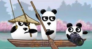 Trzy pandy w Japonii