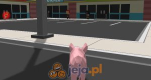 Symulator wściekłej świni