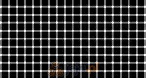 Czarna kropka