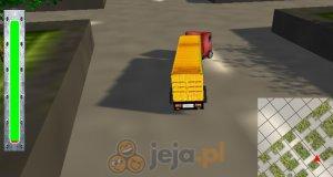 Kierowca ciężarówki 3D