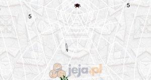Niepokonany pająk
