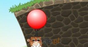 Zwierzaki na balonach