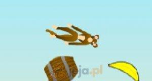 Lot małpy