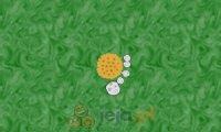 Łańcuch mikrobów