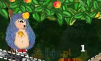 Zbiory owoców
