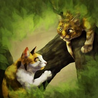 Warrior Cats (Wojownicy) [PBF]