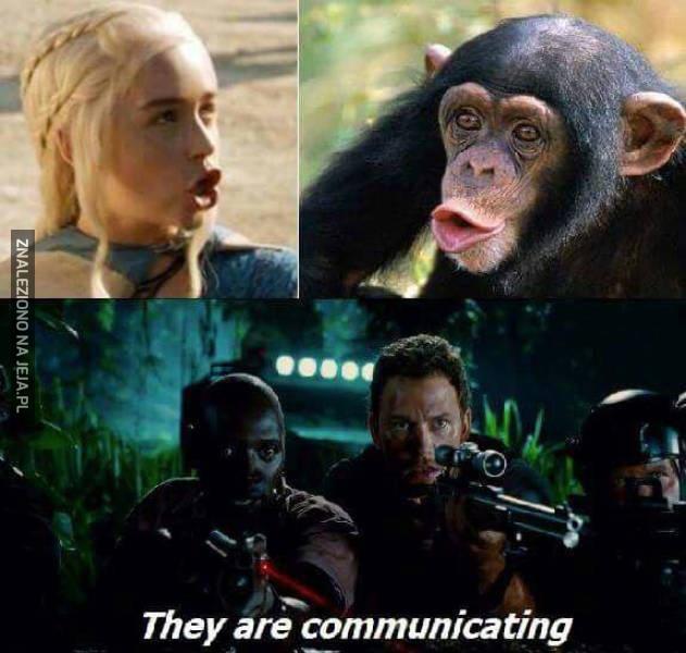Oni się komunikują!