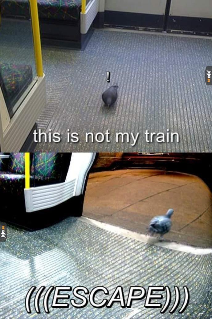 To nie mój pociąg, spadam