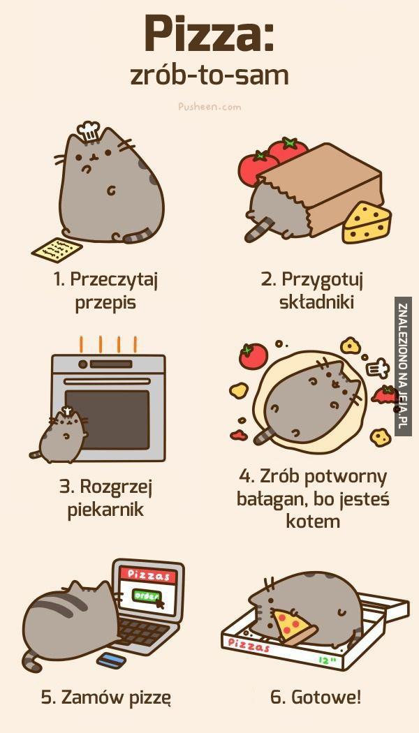 Sam Vs Cat