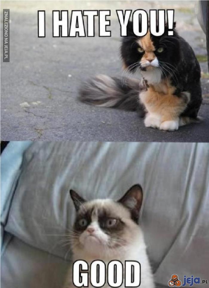 Nienawidzę Cię!