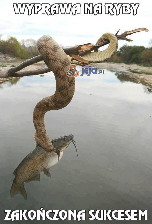 Wyprawa na ryby