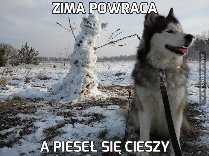 Zima powraca