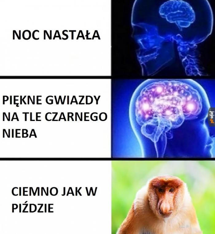 Janusz wie najlepiej
