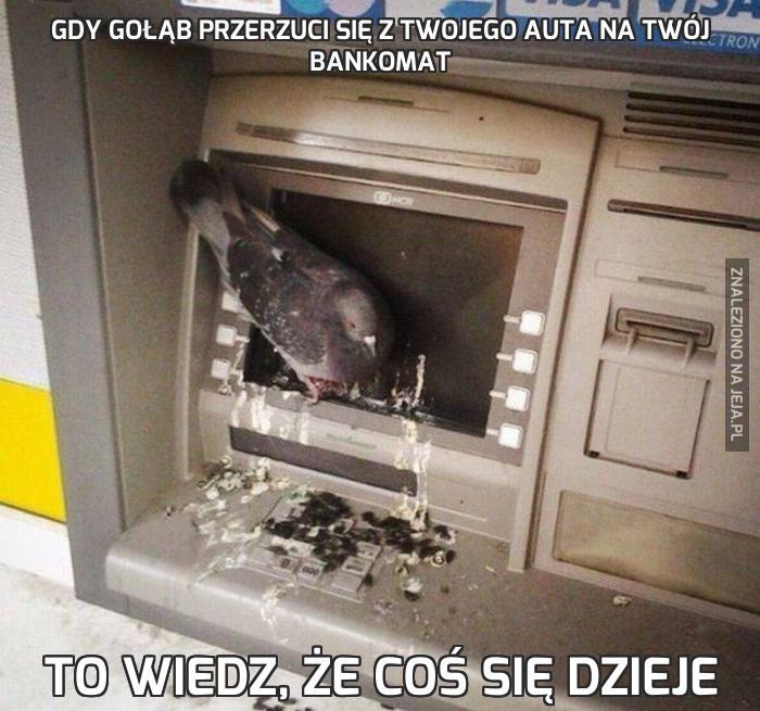 Gdy gołąb przerzuci się z Twojego auta na Twój bankomat