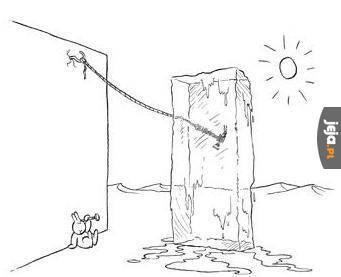 Samobójstwa zajączka: Cierpliwość