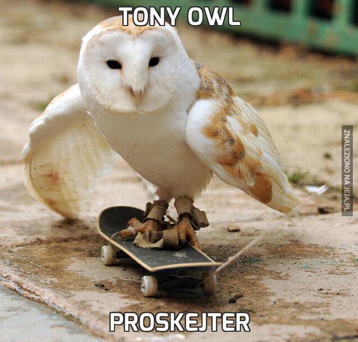 Tony Owl
