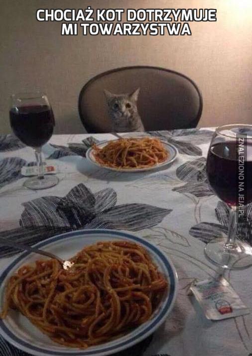 Chociaż kot dotrzymuje mi towarzystwa