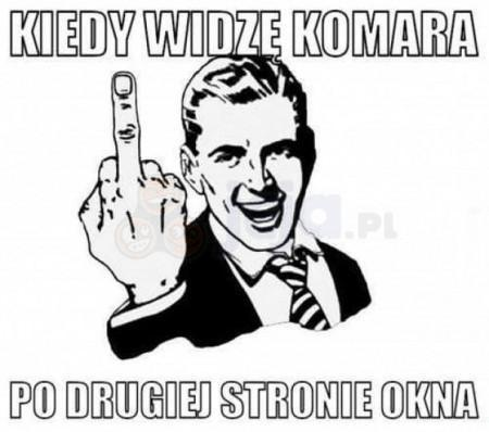Sezon na komary otwarty