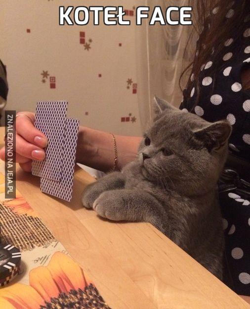 Koteł face