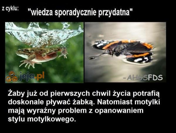 Natura jest niesamowita