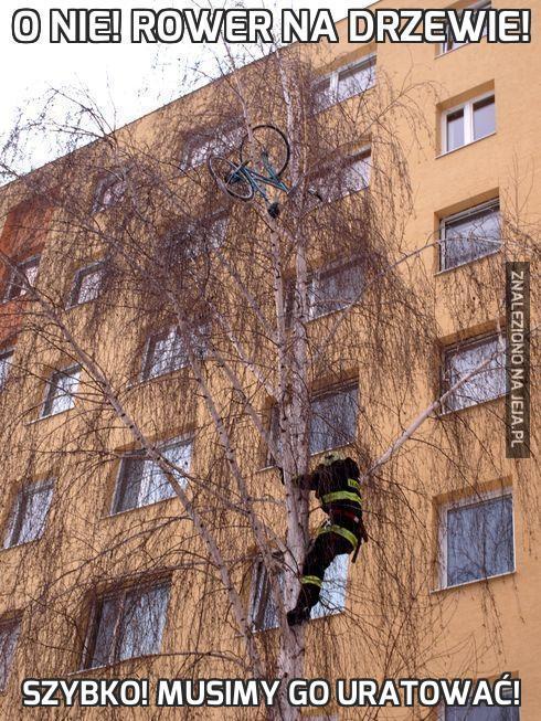 O nie! Rower na drzewie!
