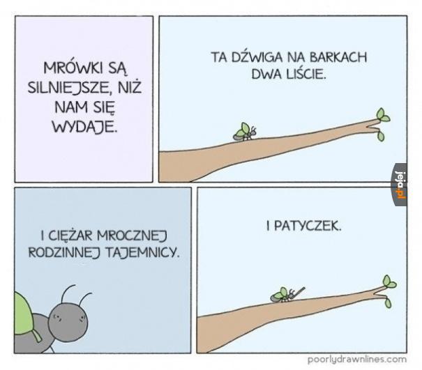 Siła mrówek