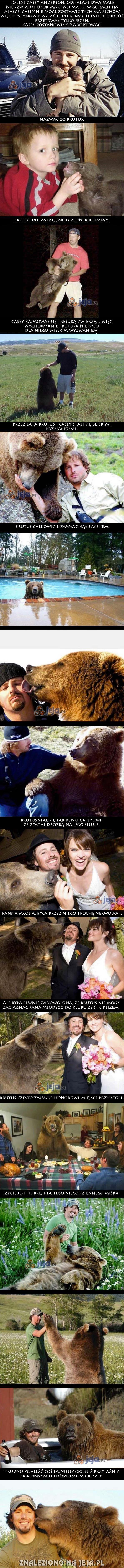 Mój brat grizzly