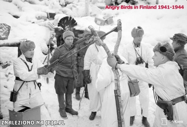 Fińskie Angry Birds
