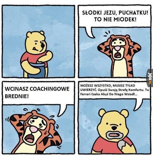 pobierak.jeja.pl/images/3/5/8/235806_coachingowe-brednie.jpg