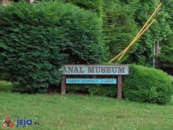 Czas przyciąć żywopłot w Canal Museum
