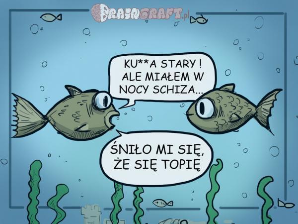 Wszystkie rybki śpią w jeziorze, tylko jedna spać nie może!